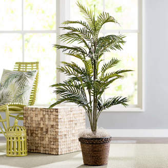 Beachcrest Home Bermudiana Palm Tree in Basket