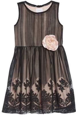 Frais Mesh Overlay Dress