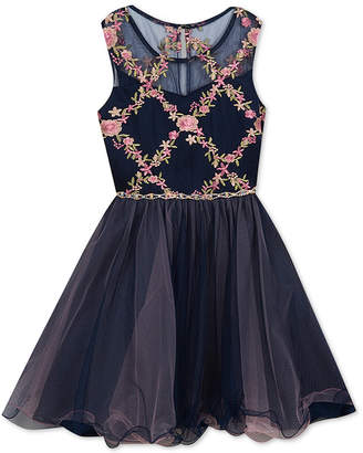 Rare Editions Big Girls Embroidered Fit & Flare Dress