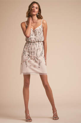Adrianna Papell Charlotte Dress