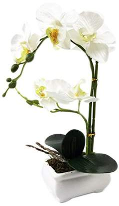 """PEPPERLONELY Brand 13"""" H Artificial Ceramic Potted Plant Orchid"""