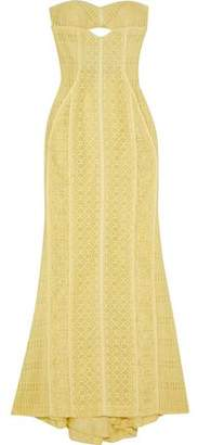 J. Mendel J.mendel Strapless Cutout Cotton-Blend Corded Lace Gown