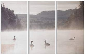 Graham & Brown Swan Lakeside Canvas Trio