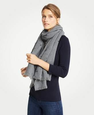 Ann Taylor Pearlized Blanket Scarf