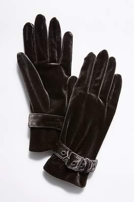 Carolina Amato Ladies First Velvet Buckle Glove