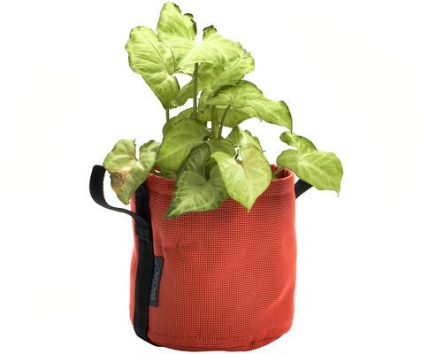 Bacsac Planter 3L Pumpkin