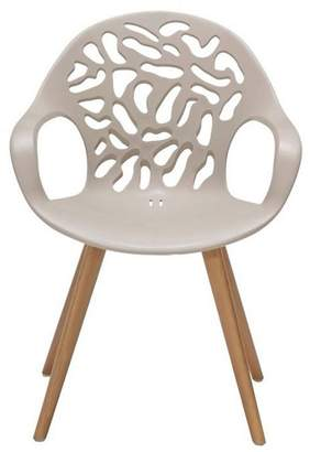 Debenhams Pair Of 'Andreas' Carver Dining Chair