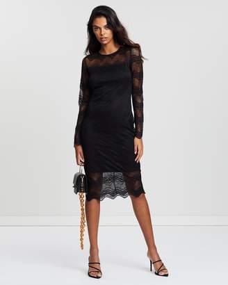 Dorothy Perkins Lace Bodycon Dress