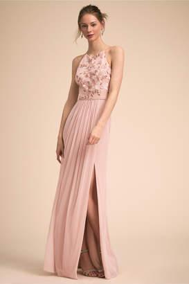 BHLDN Carine Dress