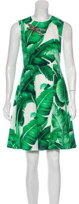 Dolce & Gabbana 2016 Banana Leaf Dress