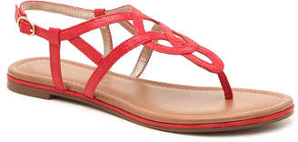 Kelly & Katie Paisly Sandal - Women's
