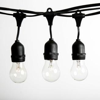 Hometown Evolution, Inc. 50 ft. 25-Light Standard String Lights Hometown Evolution, Inc.