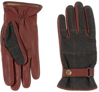 Dents Gloves - Item 46561901