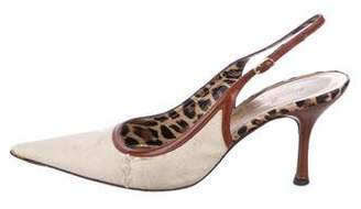 efa994414a9 Dolce   Gabbana Brown Slingback Pumps - ShopStyle