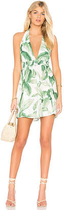 Show Me Your Mumu Island Mini Dress