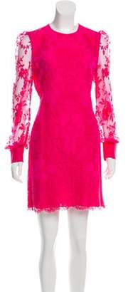 Alexander McQueen Lace Mini Dress Pink Lace Mini Dress