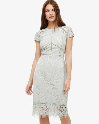 Phase Eight Eloise Lace Dress