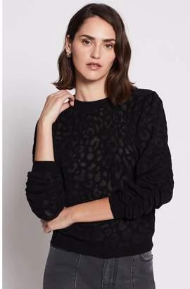 Joie Itana Sweater