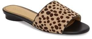 Splendid Betsy Slide Sandal
