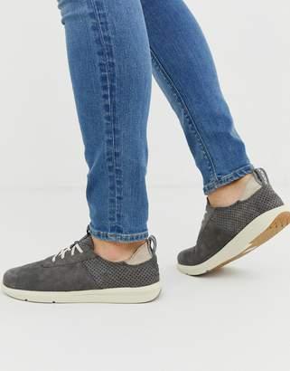 Toms cabrillo suede sneaker in grey