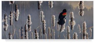 "Red Wing Shoes Wilhelm Goebel 'Marsh Notes Blackbird' Canvas Art - 10"" x 24"""