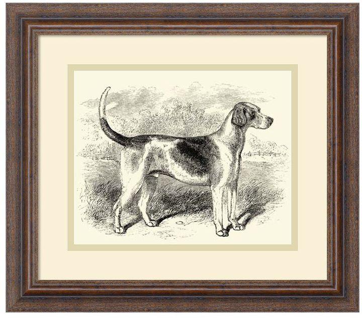 Amanti art ''Foxhound'' Framed Wall Art