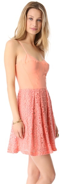 Autograph Addison Embroidered Lace Dress