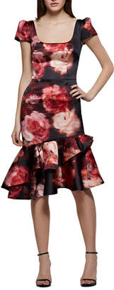 David Meister Rose-Print Fit-and-Flare Cocktail Dress