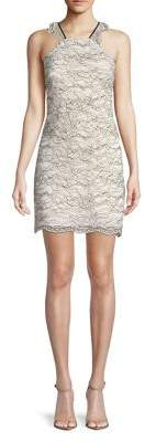 Laundry by Shelli Segal Sleeveless Scalloped Lace Dress