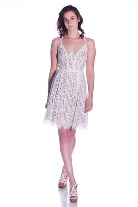 Plenty by Tracy Reese Angelic Lace Dress