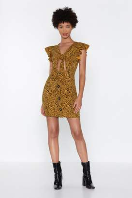 Nasty Gal You've Got to Be Kitten Me Cheetah Dress