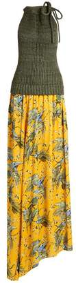Loewe X Paulas Ibiza Bird Print Maxi Dress - Womens - Yellow Print