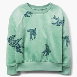 Gymboree Bird Velour Sweatshirt