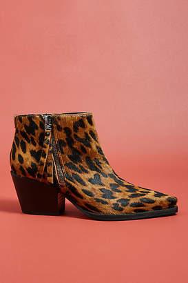 Sam Edelman Walden Leopard Booties