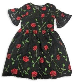 Little Girl's Embroidered Lace Dress
