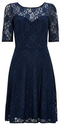 Wallis Navy Lace Fit and Flare Dress
