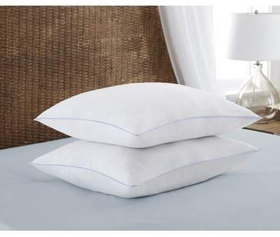Wayfair Super Plush Down Alternative Pillow