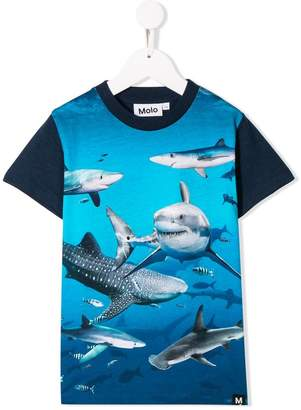 Molo Raymont T-shirt
