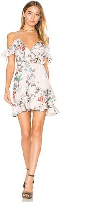 MAJORELLE Salsa Dress in Blush $170 thestylecure.com