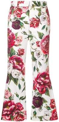 Dolce & Gabbana Peony print cropped trousers