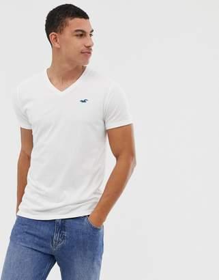 Hollister Core V-Neck T-Shirt Seagull Logo in White