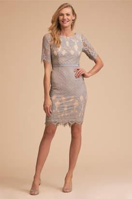 Adrianna Papell Whitney Dress