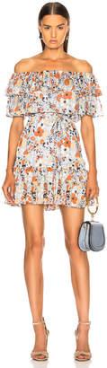 Alexis Maj Dress