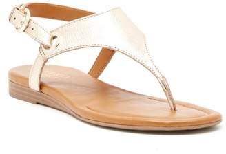 Franco Sarto Goldy Metallic Leather Sandal