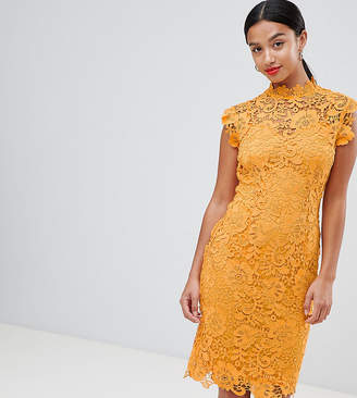 Paper Dolls Petite High Neck Crochet Lace Pencil Dress