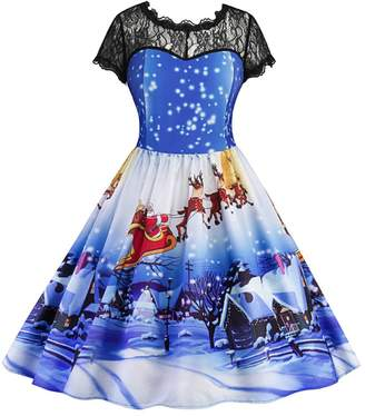 Wendybridal Women Vintage Christmas 1950s Retro Lace A-Line Dress with Short Sleeves Blue L