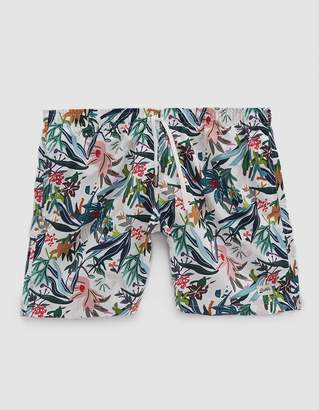Trunks Bather Color Jungle Tropics Swim in Multi