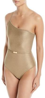 Diane von Furstenberg One-Shoulder Belted One-Piece Swimsuit