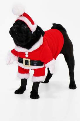 boohoo Novelty Christmas Dog Outfit & Hat