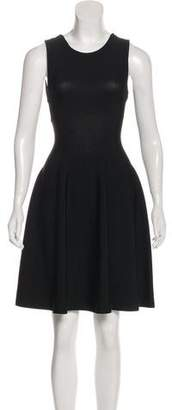 Issa Sleeveless Knee-Length Dress